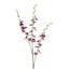 Orchidej 3018125mm-50 - bílá/zelená, Basics, umělá hmota (100cm)