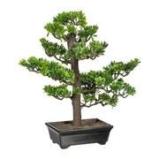 Umelá Rastlina Bonsai - hnedá/zelená, umelá hmota (43 cmcm)