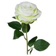 Rose Eva Weiss/grün - Weiß/Grün, Natur, Kunststoff (47cm)