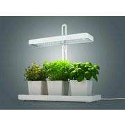 Pflanzenleuchte-Set Maxxmee Led Weiss - Weiß, Basics, Kunststoff/Metall
