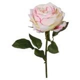 Rose Rebecca Creme-rosa - Rosa/Grün, MODERN, Kunststoff/Textil (38cm)