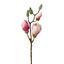 Umelá Kvetina Magnolie - hnedá/zelená, Basics, plast (43cm)