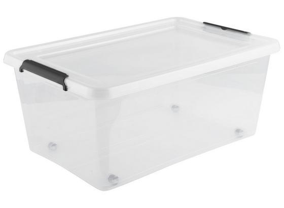 Box S Krytom Bruno - transparentné, plast (58/39/25cm)