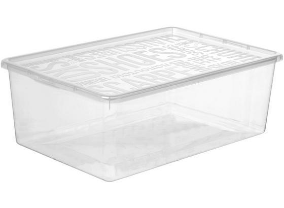 Box S Víkem Sandra - průhledné, umělá hmota (25,8/13,3/39cm) - Mömax modern living