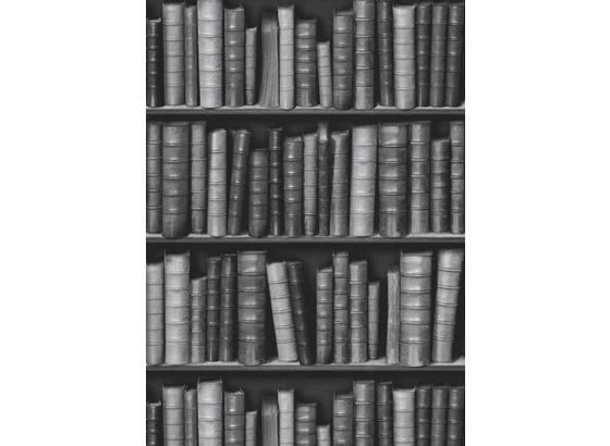 Tapeta Schäfer Illusionen 2016 61834 - sivá, Moderný, papier (53/1005cm)