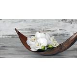 Dekopaneel Asian Flower - Multicolor, MODERN, Holzwerkstoff (120/50/2,5cm)