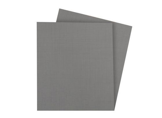 Einlegeboden Fly B: ca. 43 cm Grau - Grau, Design, Holzwerkstoff (43/2/50cm) - Carryhome