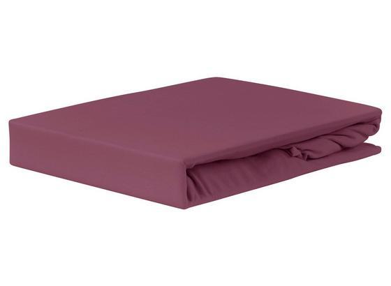 Spannleintuch Jardena 100x200 cm - Aubergine, KONVENTIONELL, Textil (90-100/200cm) - Ombra