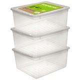 Aufbewahrungsboxen-Set Bea 3er Set - Transparent, Kunststoff (39/33,5/18cm)