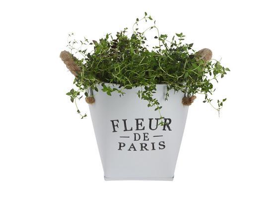 Kvetináč Fleur De Paris - biela, Romantický / Vidiecky, kov (17cm) - Mömax modern living