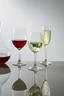 Weißweinglas Festival 4er Pack - Klar/Transparent, KONVENTIONELL, Glas (7,3/19,3cm) - Spiegelau