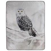 Kuscheldecke Schneeeule - Weiß/Grau, Textil (130/160cm)