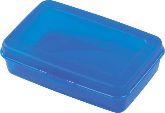 Jausenbox Groß - Blau/Transparent, KONVENTIONELL, Kunststoff (12.8/8/19cm)