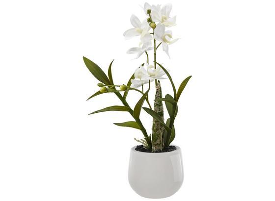 Umelá Rastlina Japonská Orchidea - biela/zelená, Basics, plast (40cm)