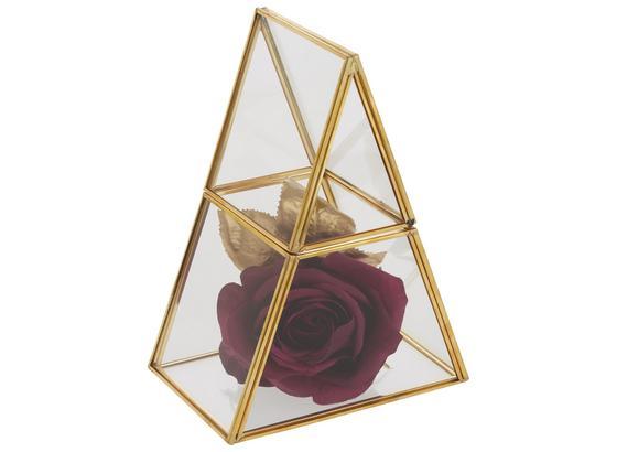 Box Dekorační Adriana - čiré/barvy zlata, kov/sklo (15/10/20cm) - Modern Living