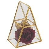 Dekoračná Krabica Adriana - zlatá/číre, kov/sklo (15/10/20cm) - Modern Living