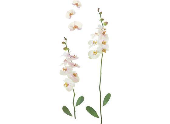 Ozdobné Nálepky Orchidea - viacfarebná, plast (50/70cm)