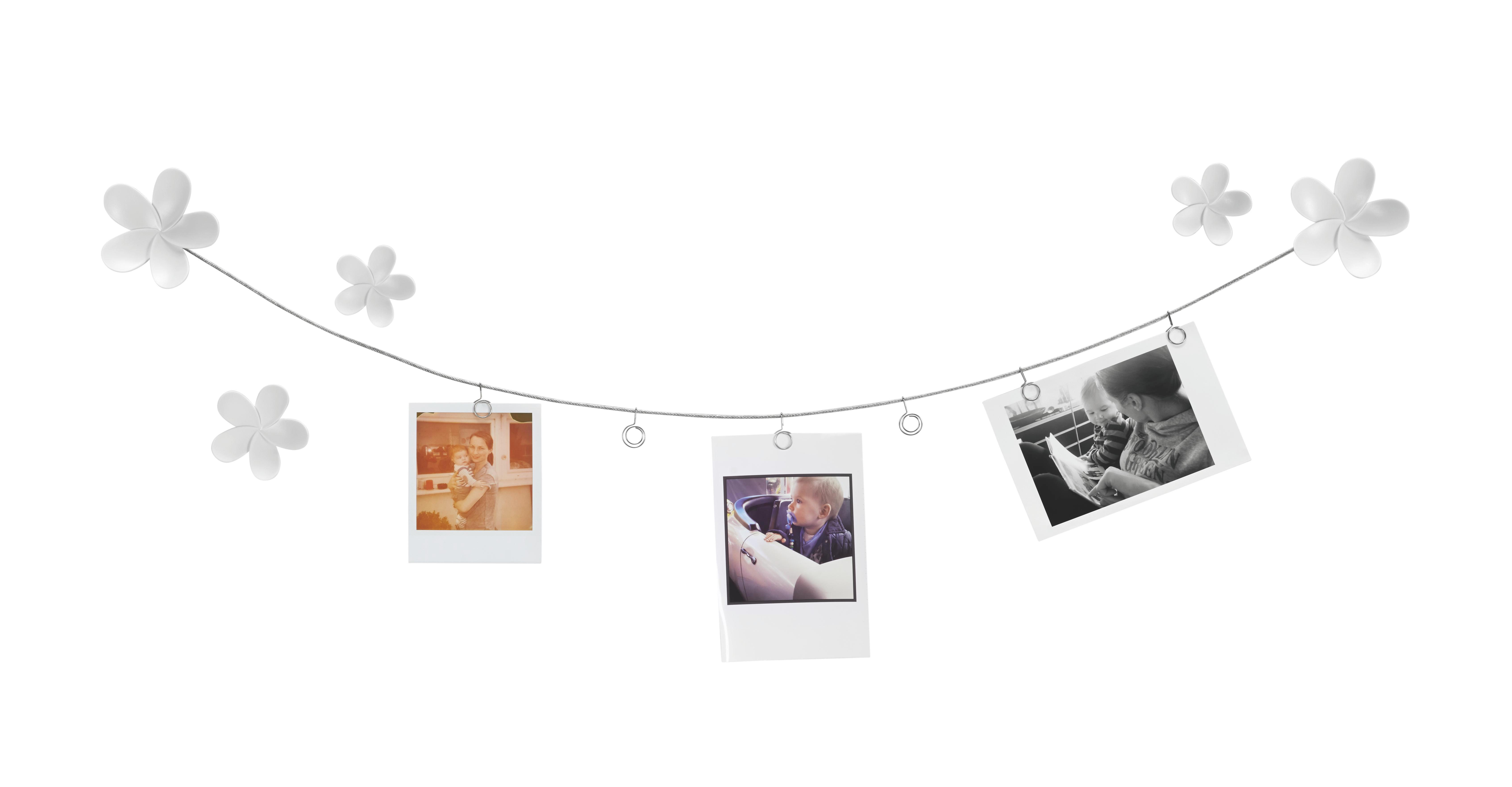 Stojan Na Fotografie Casius - bílá, Moderní, kov/umělá hmota (20,96/14,73/4,57cm) - MÖMAX modern living