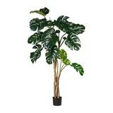 Kunstpflanze Philodendron H: 170 cm - Schwarz/Braun, Basics, Kunststoff (170cm) - MID.YOU