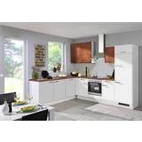 Vstavaná Kuchyňa Pn 80/310 - Basics (285/245cm)