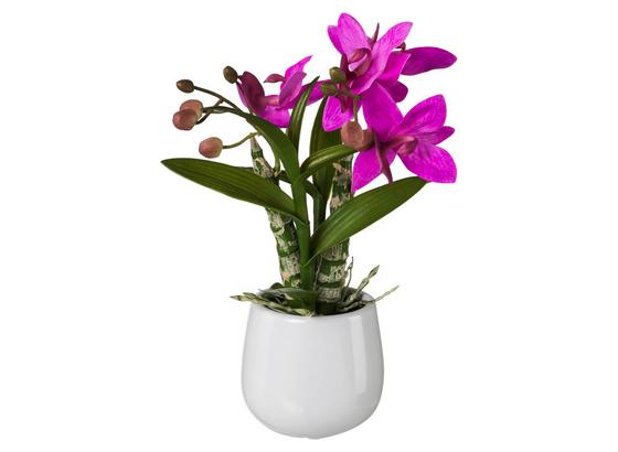 Rostlina Umělá Japonská Orchidej - pink/zelená, Basics, umělá hmota (32cm)