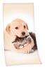 Velourstuch Hund/katze - Multicolor, Textil (75/150cm)