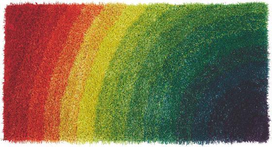 Shaggy Szőnyeg Adamina - Színes, konvencionális, Textil (60/120cm) - Luca Bessoni