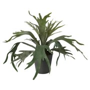 Kunstpflanze Xenia - Grün, MODERN, Kunststoff (41cm)