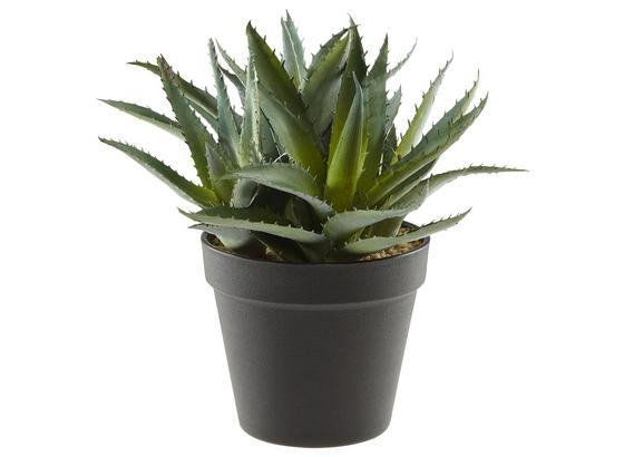 Rostlina Umělá Aloe - zelená, Basics, umělá hmota (23cm)