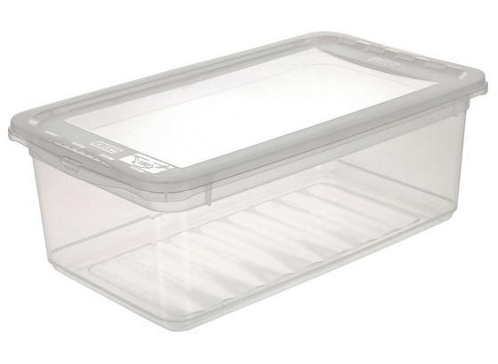Box mit Deckel Bea, 5,6 Liter - Transparent, KONVENTIONELL, Kunststoff (33/19,5/12cm) - Homezone