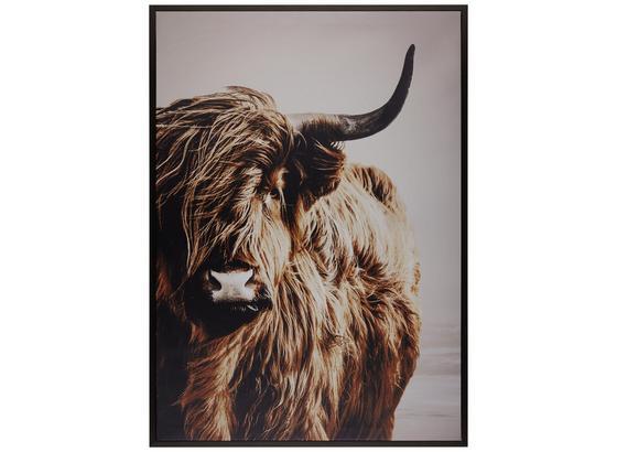 Obraz S Klínovým Rámom Liam - farby dubu/hnedá, kompozitné drevo/textil (50/70cm) - Mömax modern living