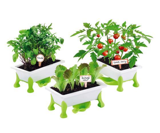 Kinder-pflanzset Grüner Daumen, Gemüse - Weiß/Grün, MODERN, Kunststoff (39/10/30cm)