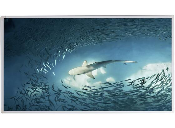 Infrarot Heizung 720 W Shark 120x60 cm, inkl. Thermostat - Weiß, Basics, Metall (119,5/59,5/1,6cm)