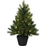 Kunstpflanze Tannenbaum 'Gustl' - Schwarz/Grün, KONVENTIONELL, Kunststoff (60cm)