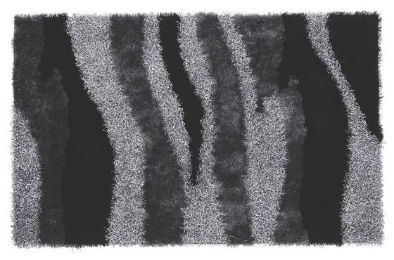 Hochflorteppich Carina 100x160 cm - Schwarz, KONVENTIONELL, Textil (100/160cm) - Luca Bessoni