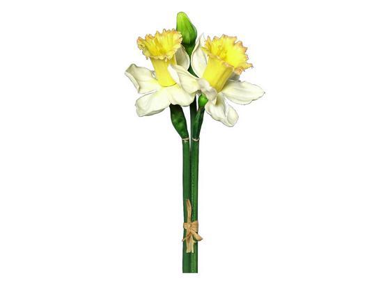 Narzisse 35717-45mx - Gelb/Weiß, Basics, Kunststoff (52cm)