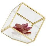 Kunstpflanze Cade - Pink/Weiß, Basics, Glas/Kunststoff (11,7/12cm) - Luca Bessoni