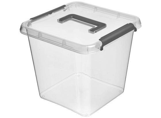 Aufbewahrungsbox Larissa - Transparent, Basics, Kunststoff (29/29/26cm)