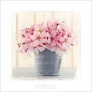 Bild Pink Blossom - Rosa/Weiß, MODERN, Papier/Holzwerkstoff (34/34/1,9cm)
