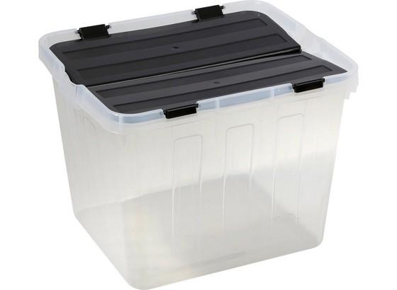 box mit deckel flipper 30 liter online kaufen m belix. Black Bedroom Furniture Sets. Home Design Ideas