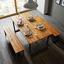 Záhradný Stôl Leonor 180x90cm - čierna/farby agátu, Moderný, kov/drevo (180/90/75cm) - Modern Living