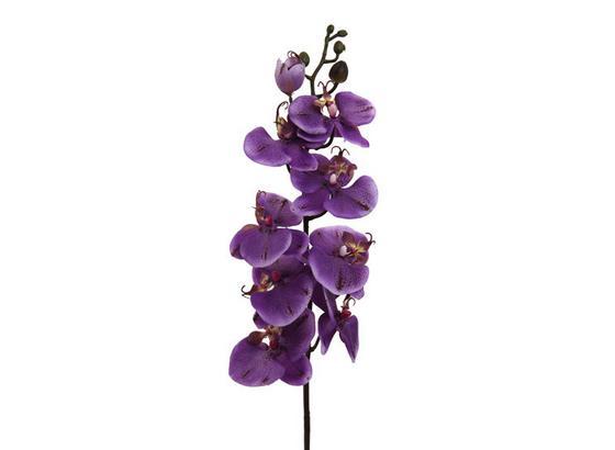 Rostlina Umělá Gundula - zelená/fialová, umělá hmota (98cm) - Mömax modern living