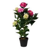 Kunstpflanze Hortensie H: 109 cm - Schwarz/Rosa, Trend, Kunststoff (109cm)