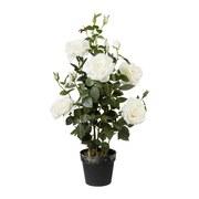 Kunstpflanze Rosenbusch H: 90 cm Weiß - Weiß/Grün, Trend, Kunststoff (90cm) - MID.YOU