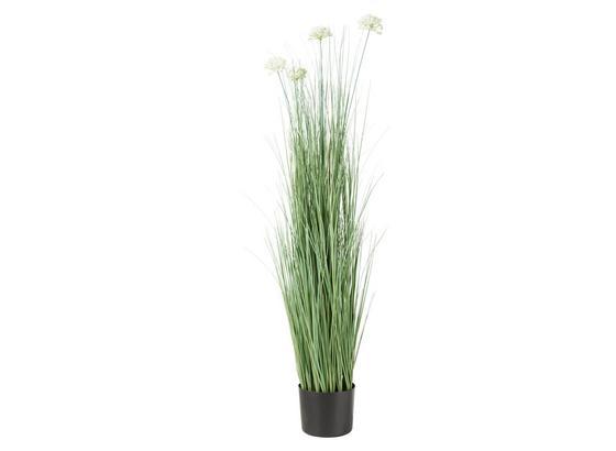 Rostlina Umělá Sina - bílá/zelená, Konvenční, kov/umělá hmota (13,7/120cm) - Mömax modern living