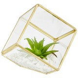 Kunstpflanze Cade - Weiß/Grün, Basics, Glas/Kunststoff (11,7/12cm) - Luca Bessoni