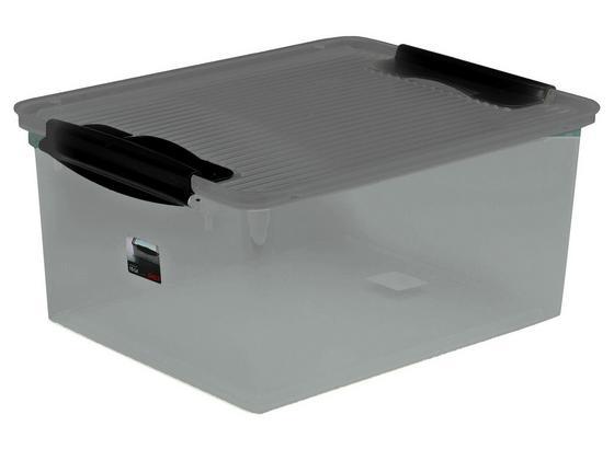 Box mit Deckel Wild Dove ca. 15 L - Grau, KONVENTIONELL, Kunststoff (38/29/17cm) - Plast 1