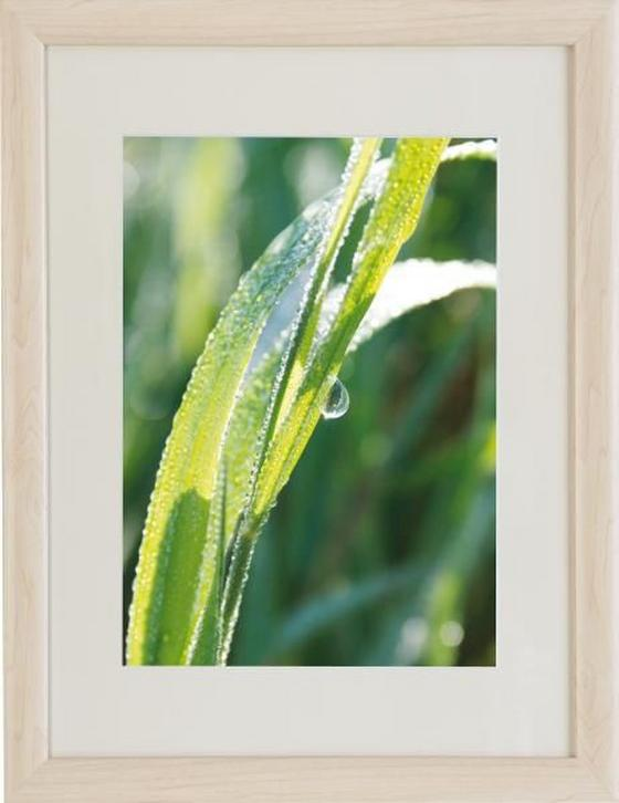 Bilderrahmen A4 Noah, 21x29,7cm - Naturfarben, KONVENTIONELL, Glas/Holz (21/29,7cm) - OMBRA