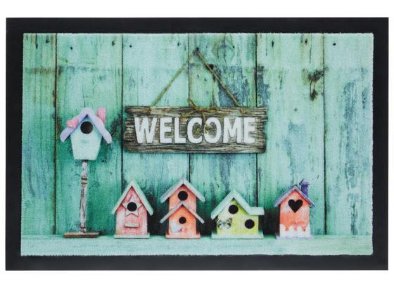Rohožka Welcome House - viacfarebná, Moderný, textil (40/60cm) - Mömax modern living