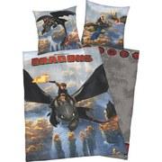 Povlečení Dragons - Konvenční, textil
